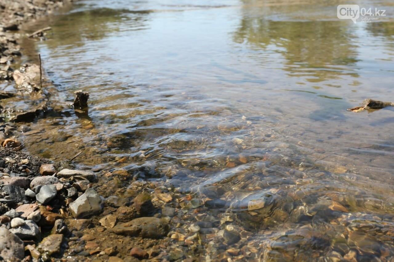 Работы по расширению русла рек в Актобе приостановлены - Магзум Мирзагалиев, фото-1
