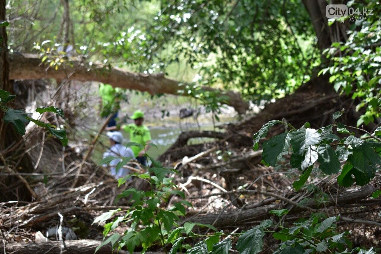 #Birge #TazaQazaqstan: Ақтөбе даласы тазарды ма? , фото-4