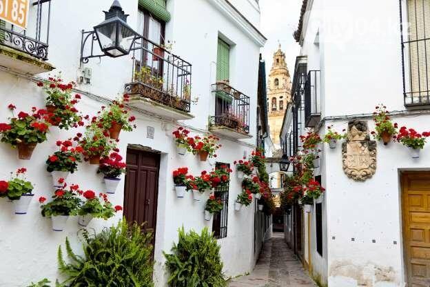 25 самых красивых улиц мира, фото-7