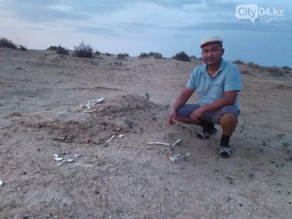 В Уиле найдены древние артефакты, фото-1