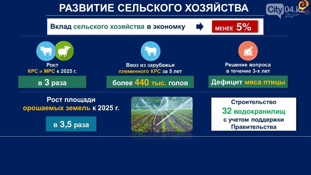 Площадь орошаемых земель в Актюбинской области достигнет 100 тысяч гектаров, фото-1