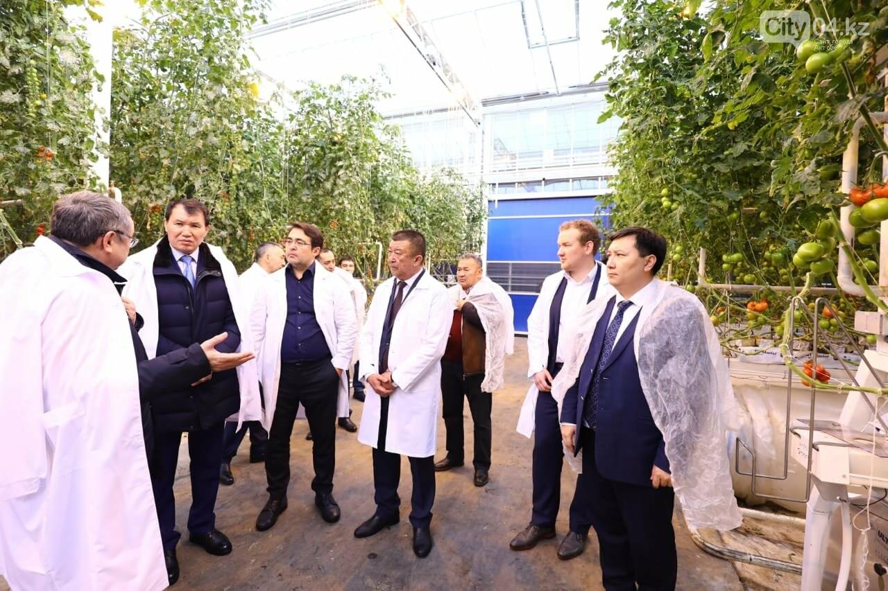 Алик Шпекбаев посетил «Green Capital Kazakhstan», фото-2